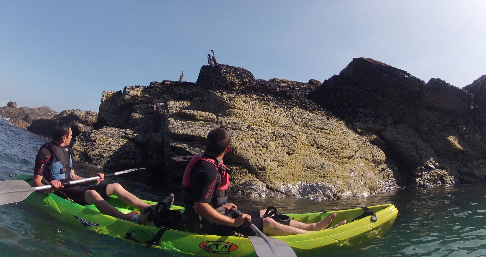 E.g. 'Kayak tours Port Isaac, Cornwall' Wildlife kayak tours.